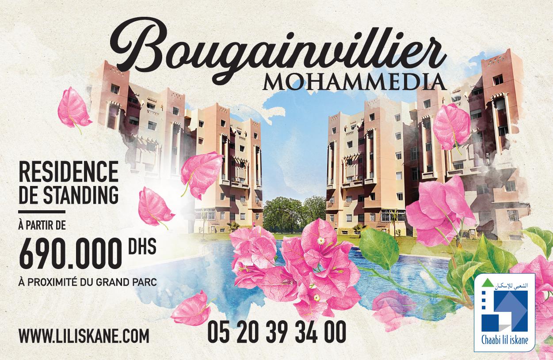 Bougainvillier